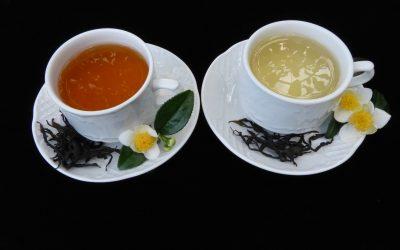 O té galego protagonizará cinco obradoiros en Etiqueta Negra